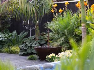 Landscaping Auckland Landscape Designer Residential Landscape